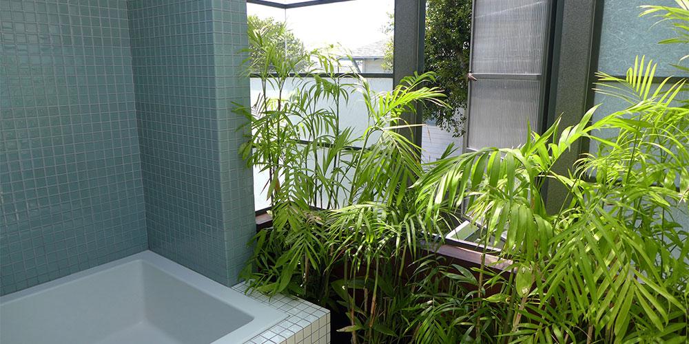 baño verde