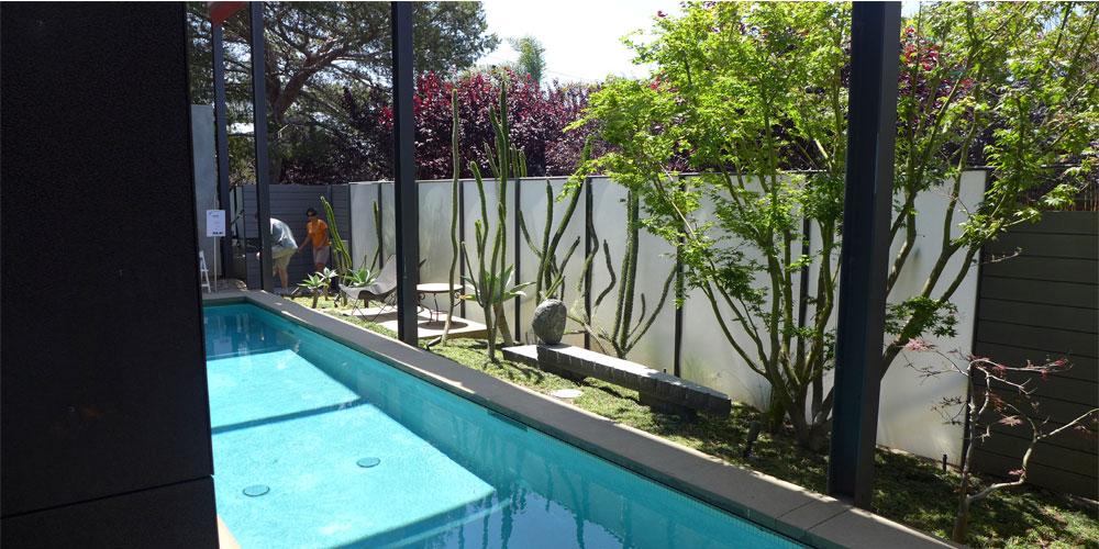 piscina bordeada de cactus